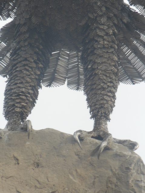 The talons and feathered legs of the Eagle sculpture at the new Brighton Veteran's Memorial.